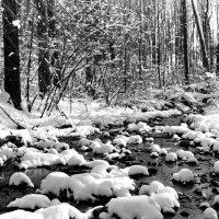 Снег :: Николай Демидовец