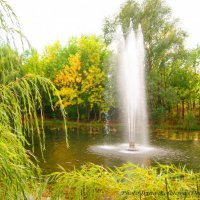 Золотая осень... :: Ирина Дегтярева