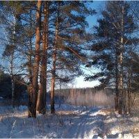 зима-3 :: hijsi sevole