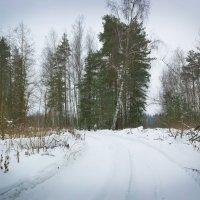 Зимняя дорога :: Ирина Рассветная