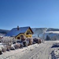 Морозным утром :: tamara *****