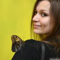 выставка бабочек :: Alpha_ MaLiNa