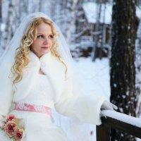 Зимняя сказка :: Вера Кусабаева