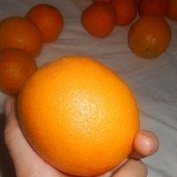 Апельсинчик :: Оля Белых