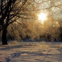 мороз и солнце..... :: татьяна соловьёва