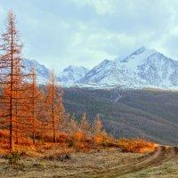 Тепло и холод... :: Алексей Качурин