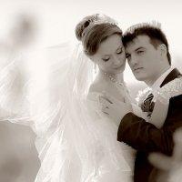 Илья и Жанна 2012 :: Алексей Качурин