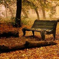 Золотая осень :: Егор 1 Бровцын