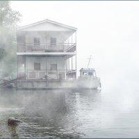 На реке (утро) :: Валерий Коноплев