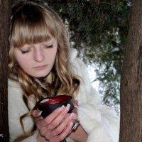 Замерзшая :: Дарья Норманских