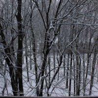 Tombe la neige :: Yury Berestovoy