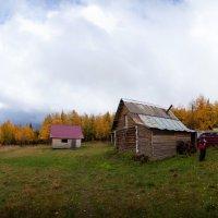 Осень :: Владимир Кочкин