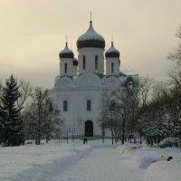 Екатерининский Собор зимним днем :: Олег Попков