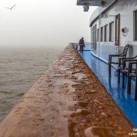 Теплоход, дождь, туман. :: Valeriy Piterskiy