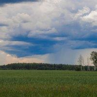 Дождь :: Руслан Веселов