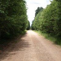 Завтра снова дорога :: Геннадий Кульков