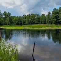 Место у реки.. :: Юрий Стародубцев