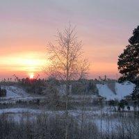 Морозное утро :: Надежда