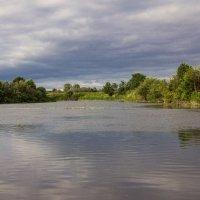 река Пьяна :: Ксения Котова