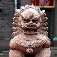Китайский лев, лев-страж :: Ирина Фирсова