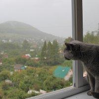 Чем пахнет воздух? :: Марина Marina
