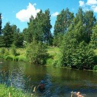 Прогулка по реке Оредеж. :: Виктор Елисеев