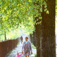 Лето в Молочном :: Валерий Талашов
