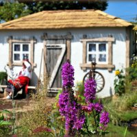 Лето в селе :: N. Burmistrova Наталья