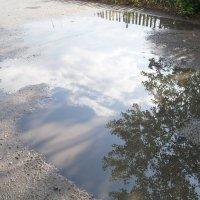 После дождичка в четверг :: Алексей Масалов