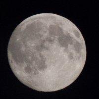 луна :: Диана Матисоне