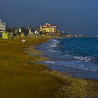 Пляж в п. Приморском :: Аркадий Беляков