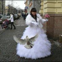 На крыльях любви. :: Екатерина Артамонова