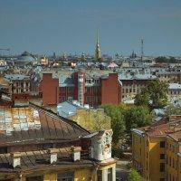 На крышах Петербурга :: Василий Богданов
