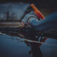 пчелки на водопое :: Юрий Крутский