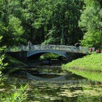 В парке мостик :: Наталья