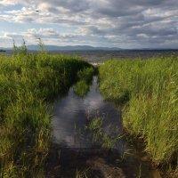 Буря прошла, оставив разлив.. :: Сергей Адигамов
