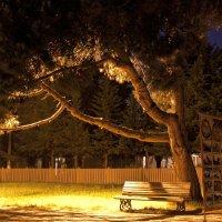 Ночь :: Любовь Нефёдова