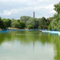 Пруд в парке Победы, любимый всеми.. :: Lara