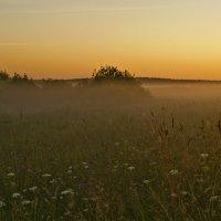 Восход над полем. :: Виктор Евстратов