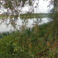 Река :: Людмила рождественская