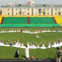 Парад невест 3 :: Павел Савин