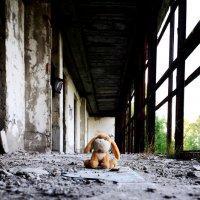 Забытая игрушка... :: Светлана Ткаченко