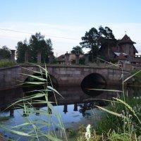 Старый мост :: Таня Фиалка