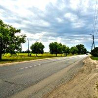 Дорога на Полтаву :: Виктория Власова