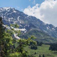 Швейцарские Альпы :: Сергей Шруба