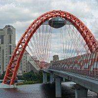 Тот же мост, но ближе… :: Valeriy(Валерий) Сергиенко