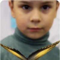 Укротитель бабочек :: Анна Окунева