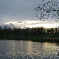 Вечерний парк.... :: Tatiana Markova