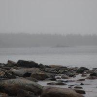туман :: антон витязев