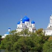 Свято-Боголюбский монастырь. :: Larisa